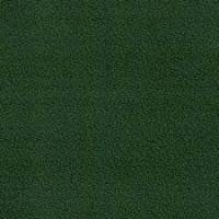 Verde Musgo (094)