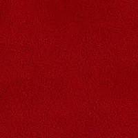 Vermelho (049)