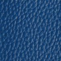Azul Marinho (127)